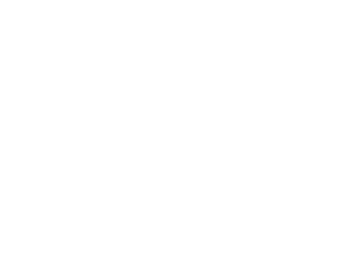 Envision by Design